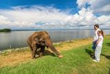 Family at Udawalawe National Park - 222851764