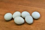 青い卵 - 222895172