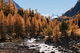 Beautiful alpine autumn landscape.
