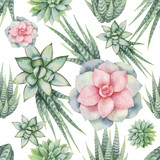 Watercolor vector seamless pattern of cacti and succulent plants isolated on white background. - 222922708