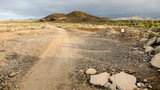 Dirt road desert - 222923519