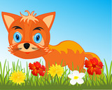 Drawing animal fox on white background is insulated
