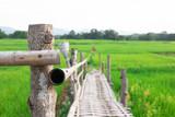 Bamboo bridge In the green rice field