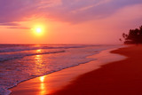 Scenic tropical beach with palm trees at sunset background,   Sri Lanka. - 222950914