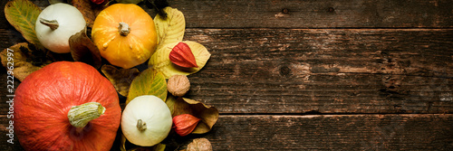 Autumn Harvest and Holiday still life. Happy Thanksgiving Banner. Selection of various pumpkins on dark wooden background. Autumn vegetables and seasonal decorations. - 222962997