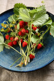 Berry bunch on plate - 222994347