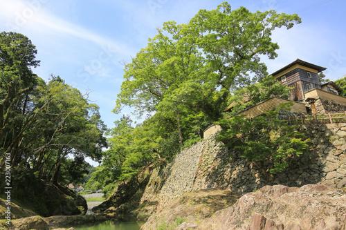臥龍山荘の風景 (愛媛県大洲市)