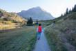 Sommer in den österreichischen Bergen