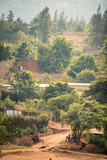 View of bakclit trees and dirt paths on a hillside in Nyamirambo, an outlying, semi-rural suburb of Kigali, Rwanda - 223016383