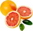 Leinwandbild Motiv Grapefruit