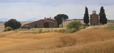Il colore oro della collina Toscana