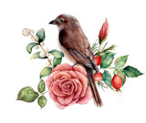 Watercolor bouquet with bird and rose. Hand painted floral illustration with pink flower, dogrose, snowberries, leaves and branches isolated on white background. For design, print or background. - 223043586