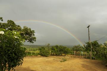 Arco Iris na Fazenda