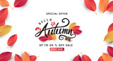 Autumn sale background layout decorate with leaves of autumn for shopping sale or promo poster and frame leaflet or web banner.Vector illustration template. - 223105789