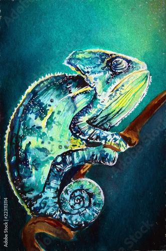 Ilustracja rysunek ręka kameleon