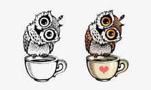 Cute Owls  Coloring And Line   Sticker