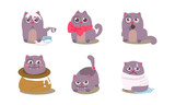 Funny grey cat in different situations with various emotions, mischievous animal character vector Illustration on a white background