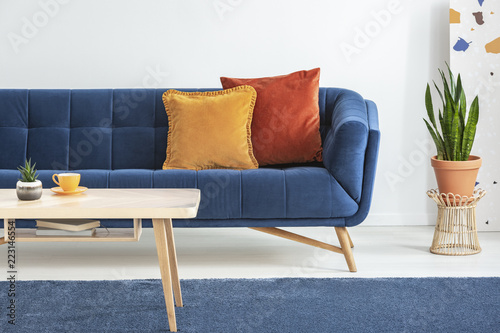 Orange And Red Cushions On A Fancy, Navy Blue Sofa And A Basic, Wooden
