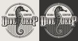 Vintage diving monochrome emblems