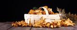 Raw wild chanterelle mushrooms. Composition with wild mushrooms - 223164142