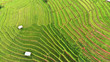 Leinwandbild Motiv Aerial view from drone paddy terraces field with hut in Thailand.