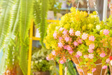 Bright and beautiful colors of plastic flowers. - 223176728