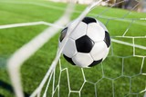 Soccer Ball in a Net - 223178784