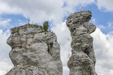rocks near the Ogrodzieniec castle in southern Poland - 223180739