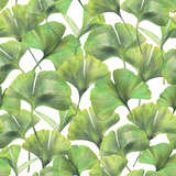 Seamless pattern with green leaves of ginkgo biloba. Hand drawn illustration with colored pencils. Botanical natural design for textiles, interior or some background. - 223197909