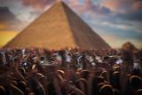 pyramids of Giza, in Egypt. - 223209567
