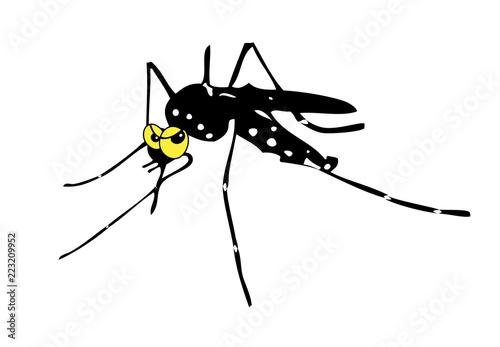 Legionella zanzara - 223209952