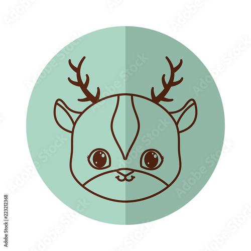 Fototapeta cute animals design