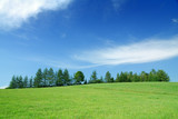 Idyllic landscape, view of green fields and blue sky
