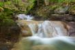 Bach mit Wasserfall im Wald im Herbst - 223221776