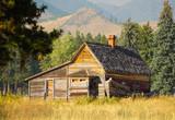 Rustic Mountain Cabin - 223246315
