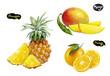 orange pineapple mango watercolor hand drawn illustration set - 223252741