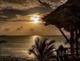 Zanzibar beauty