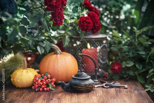 Autumn flowers and pumpkins decor - 223259713