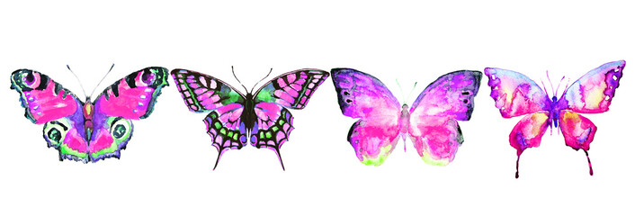 beautiful color butterflies, set, watercolor,  isolated  on a white © aboard