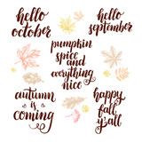 Set of phrases for autumn and harvest themes. Modern brush calligraphy lettering and hand-drawn design elements. Motivating season quotes. - 223343554