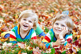 Two little twin kids boys lying in autumn leaves in colorful fashion clothing. Happy siblings having fun in autumn park on warm day. Healthy children with blond hairs and blue eyes with maple foliage. - 223373135