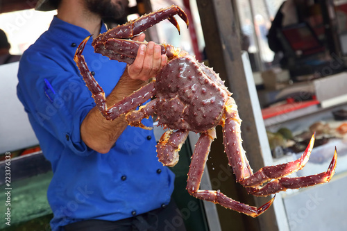 Fototapeta Cook holding a large crab