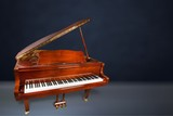 Brown Grand Piano - 223393994