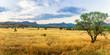 Leinwanddruck Bild - панорама степного пейзажа горами на горизонте, Крым
