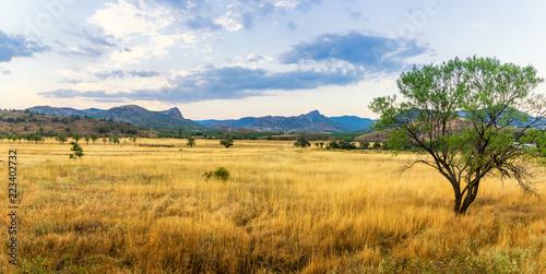 Leinwanddruck Bild панорама степного пейзажа горами на горизонте, Крым