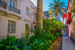 Outdoor view of of gorgeous garden with plants and palms between buildings in the Barrio Yungay in Santiago, capital of Chile