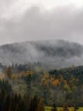 The Carpathian mountains landscape during mist in the autumn season - 223426113