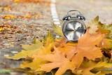 Autumn. - 223455923