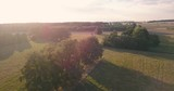 Drone footage of grass fields and trees. A flyover with nature and beautiful countryside in sunset light. Golden hour aerial footage of summer landscape. - 223460953
