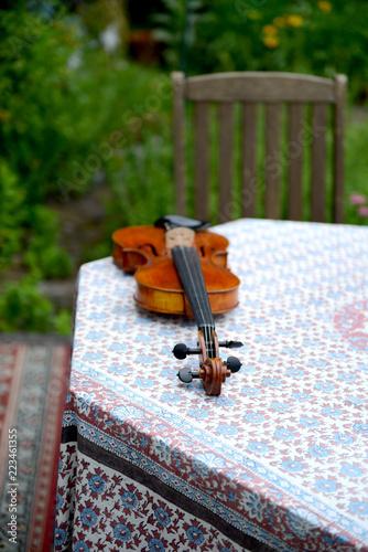 Fototapeta 美しいバイオリンと景色